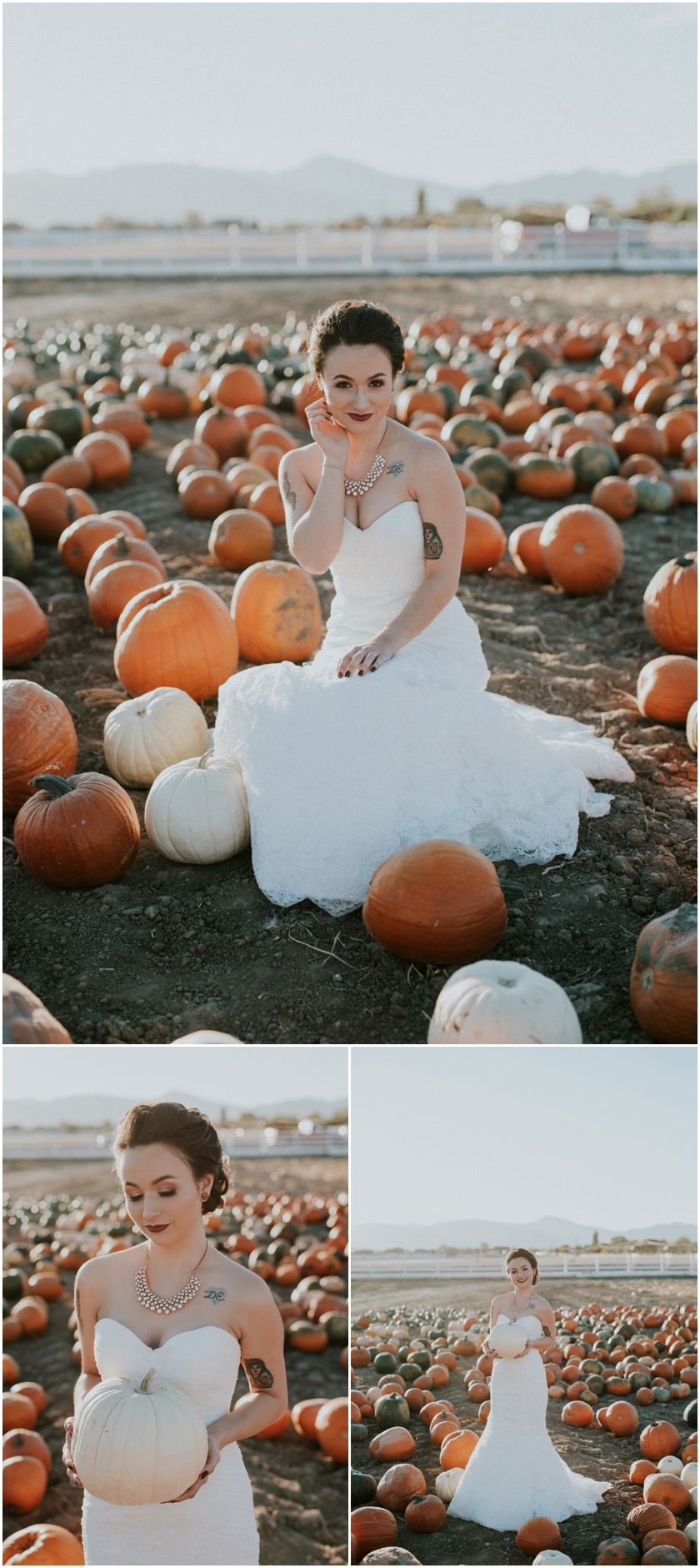 005pumpkin-patch-photoshoot-sioux-city-wedding-photographer