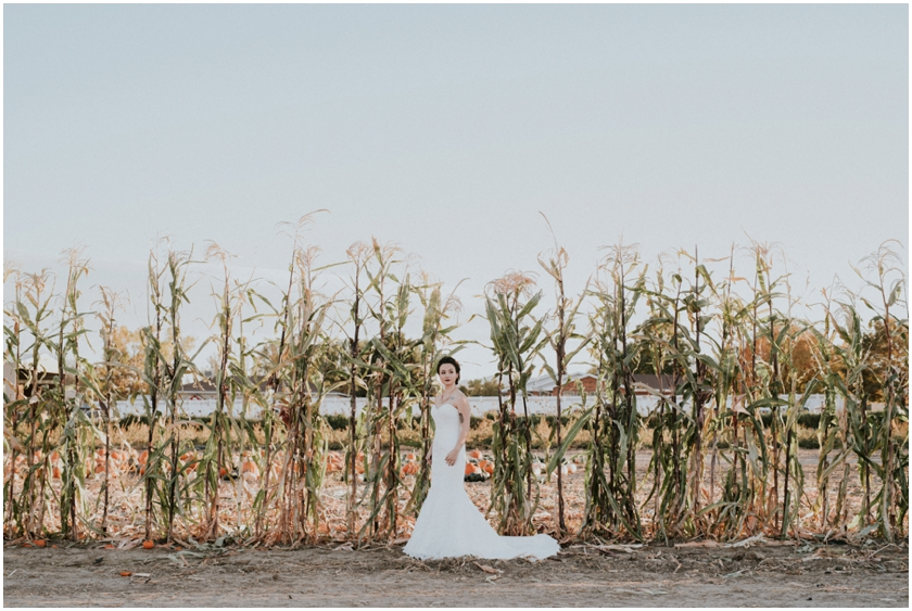 006pumpkin-patch-photoshoot-sioux-city-wedding-photographer