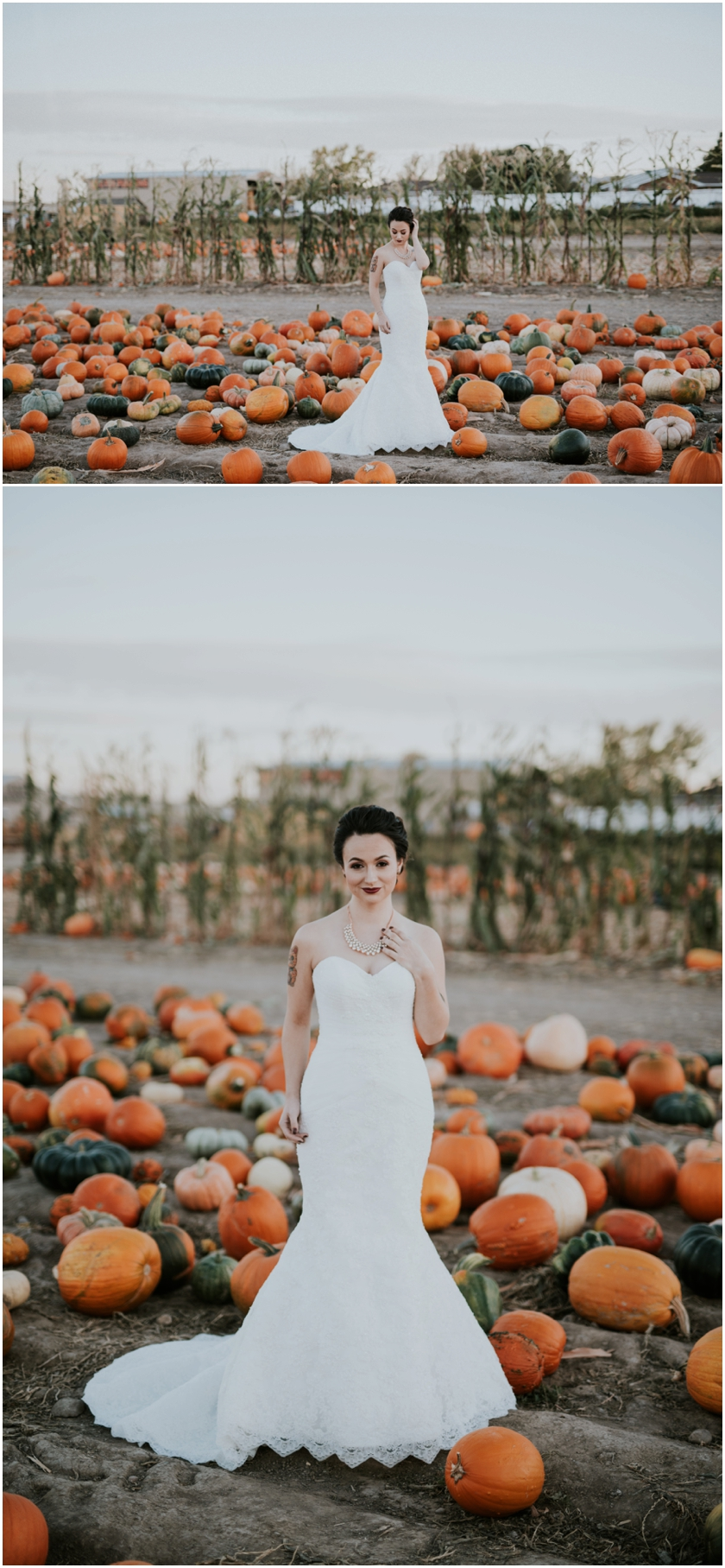 008pumpkin-patch-photoshoot-sioux-city-wedding-photographer
