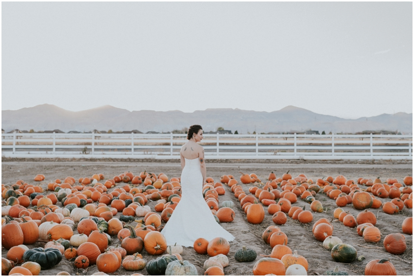 010pumpkin-patch-photoshoot-sioux-city-wedding-photographer