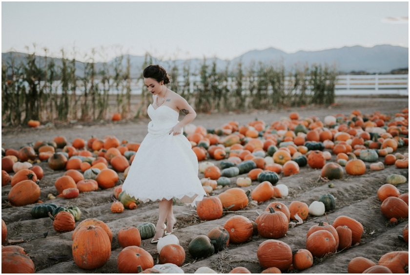 019pumpkin-patch-photoshoot-sioux-city-wedding-photographer